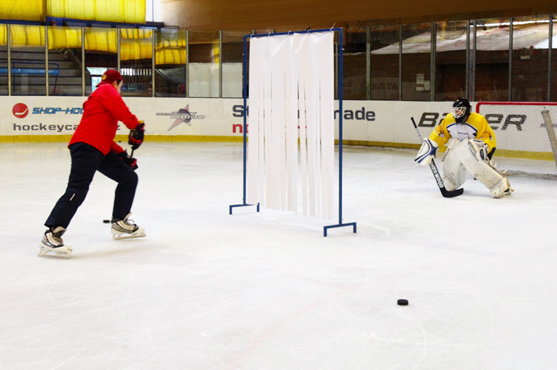 Goalie camps